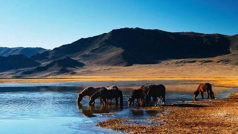- Tourisme à cheval: les plus beaux voyages récompensés | Voyage - Tourisme | Scoop.it