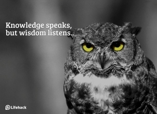 What Are the Differences Between Knowledge, Wisdom, and Insight? - Lifehack | Living together | Scoop.it
