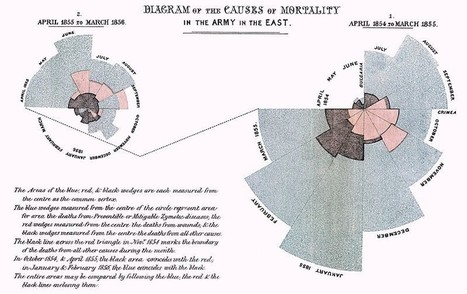The History of Data Visualization   Infograph   Scoop.it