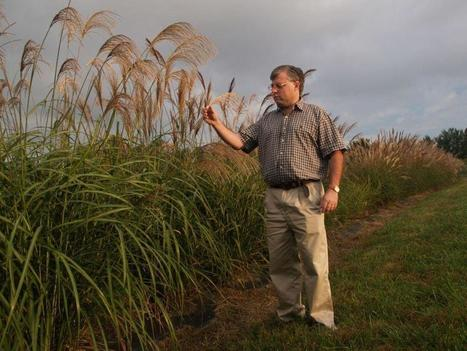 N.C. to Lead U.S. With $99M Cellulosic Ethanol Plant | North Carolina Biotech Center | North Carolina Agriculture | Scoop.it