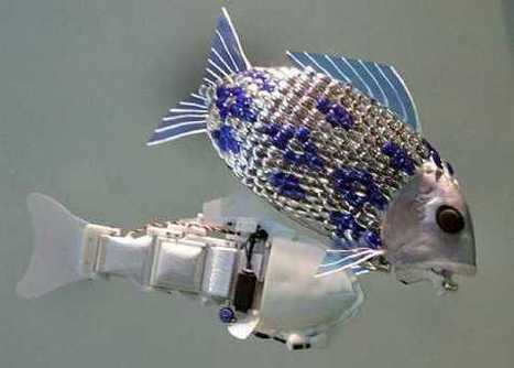Fish Robots Search for Pollution in the Waters | Biomimicry | Scoop.it