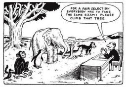 Exams: What to do when there is one size to fit all? | sharonzspace | TeachingEnglish | Scoop.it