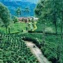 Un recorrido por los paisajes culturales de Colombia y Costa Rica: escenarios para la gestión y planificación del territorio | limes | Scoop.it