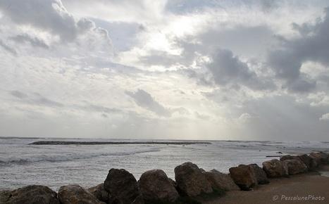 COP21 : la Camargue menacée par les eaux | Chronique d'un pays où il ne se passe rien... ou presque ! | Scoop.it