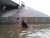 Russian Dog Pushes Owner in Wheelchair Through Flooded Street | dog wheelchair | Scoop.it