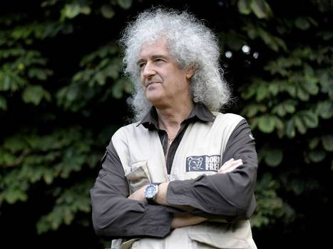 Four arrested as Brian May heads to front line of badger cull protests #care #Nature | Messenger for mother Earth | Scoop.it