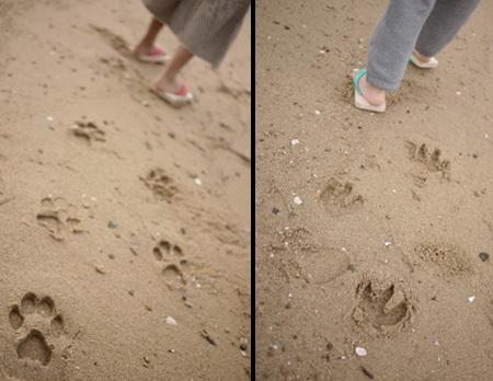 Animal Footprint Sandals | Art, Design & Technology | Scoop.it