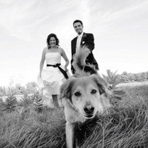 Top Ottawa wedding and engagement photographer | Photographers in Ottawa | Dental Office | Scoop.it