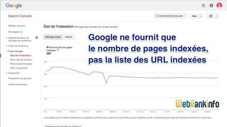 Astuces pour obtenir la liste des pages indexées par Google | rédaction web et référencement | Scoop.it