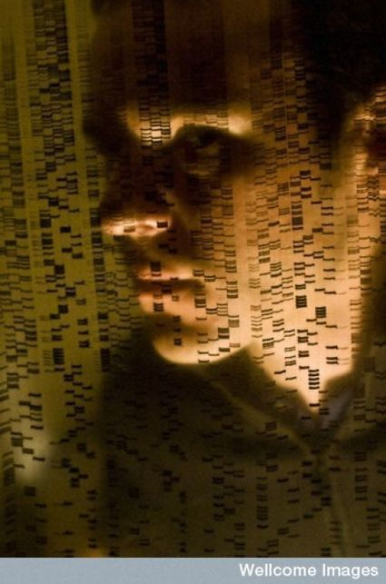 Un atlas des mutations génétiques retrace les origines de 30 cancers | Seniors | Scoop.it