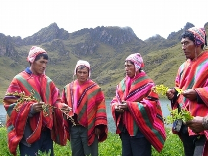 Elders in Peruvian Andes Help Interpret Climate Changes | Agricultural Biodiversity | Scoop.it