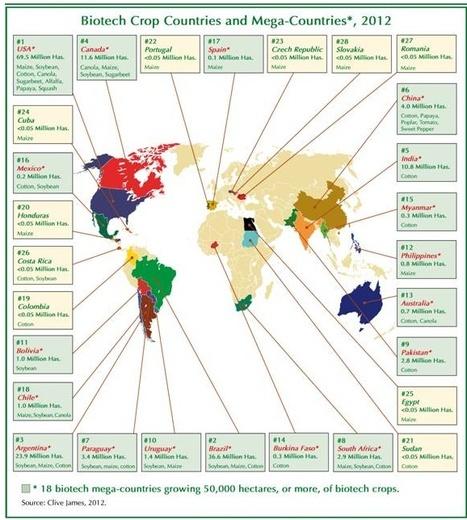 Global Biotech/GM Crop Plantings Increase 100-fold from 1996 | Food Security | Scoop.it