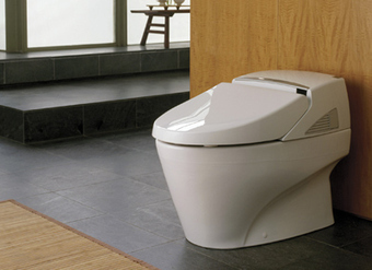 """What's the most expensive toilet in the world?"" 