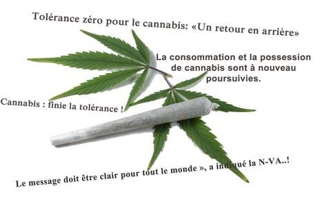 Quid de la législation cannabis en Belgique..?   activism   Scoop.it