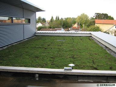La toiture verte multi usages - UN TOIT POUR LA VIE | Ma maison doHit Belgique | Scoop.it