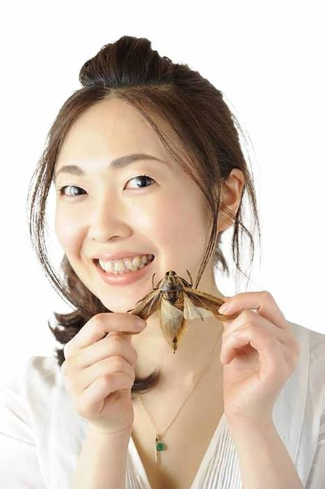 Insect recipe book author offers some new lunch recommendations - The Japan Times | Entomophagy: Edible Insects and the Future of Food | Scoop.it