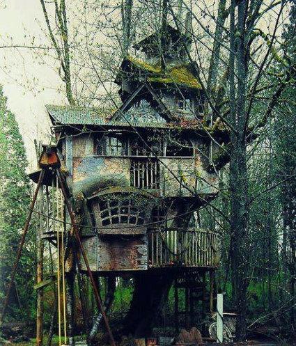 10 cabanes incroyables qui vous feront regretter de ne pas habiter dans les arbres | creativité et plateformes de mutualisations | Scoop.it