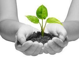 Nurture Personal Growth With Self-Compassion | Personal Development | Scoop.it