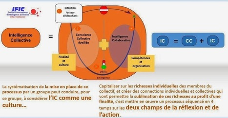 INSTITUT FRANCOPHONE COACHING d'INTELLIGENCE COLLECTIVE: Graphique pour mieux comprendre le processus de l'intelligence collective | 8.0consultant | Scoop.it