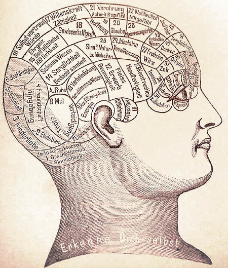 Brain Culture: How Neuroscience Became a Pop Culture Fixation   Brain Momentum   Scoop.it
