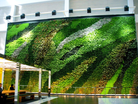 NYC Living Wall Training on 4/30 | Vertical Farm - Food Factory | Scoop.it