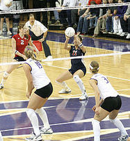 Volleyball: Learn all about player positions | Volleyball | Scoop.it