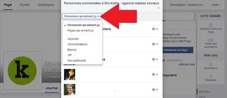 Facebook : comment retrouver la liste complète des fans de votre page ? [Astuce du jour]   web   Scoop.it