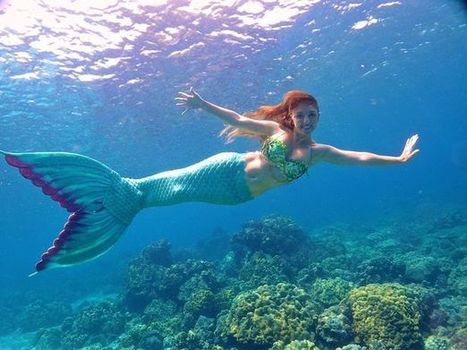 Meet the Scot who's the real-life Little Mermaid | ScubaObsessed | Scoop.it