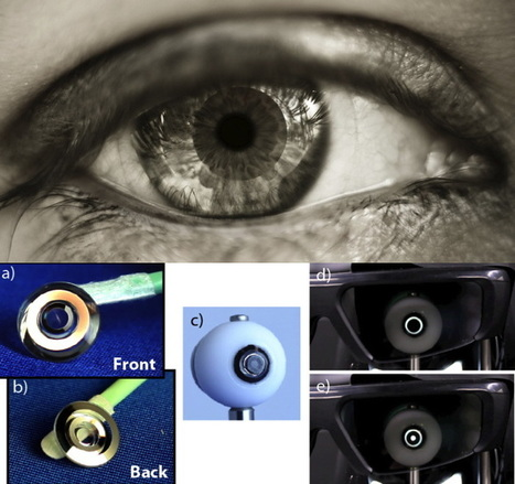 New Telescopic Contact Lens Magnifies Vision Three Times | JOIN SCOOP.IT AND FOLLOW ME ON SCOOP.IT | Scoop.it