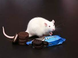 Addicted to Oreos? You truly might be | Mondelez | Scoop.it