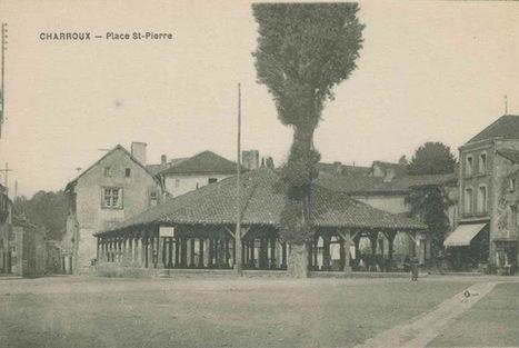 De la Belgique à la Guyane …En passant par le Poitou ! | Chris sur le blog de Lulu Sorcière | L'écho d'antan | Scoop.it