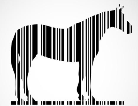 Is big data heading for its 'horsemeat moment'? - The Conversation UK | Industry News | Scoop.it