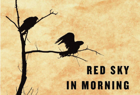 Red Sky in the Morning by Paul Lynch: review  | Toronto Star | The Irish Literary Times | Scoop.it