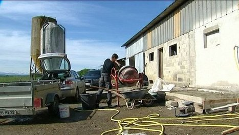 Grippe aviaire : la double peine des éleveurs - France 3 Midi-Pyrénées | Agriculture en Dordogne | Scoop.it