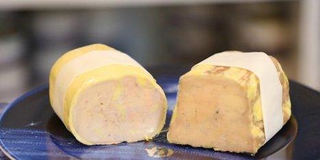 Un bon cru 2014 pour le foie gras | Agriculture en Dordogne | Scoop.it
