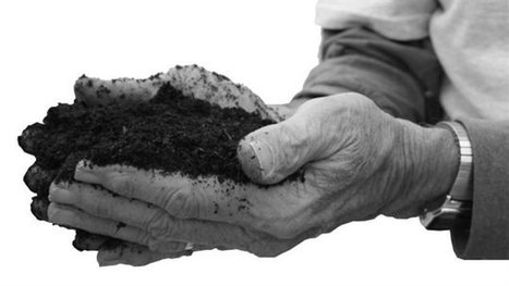 Le compost humain | Perspectives en Agroalimentaire | Scoop.it