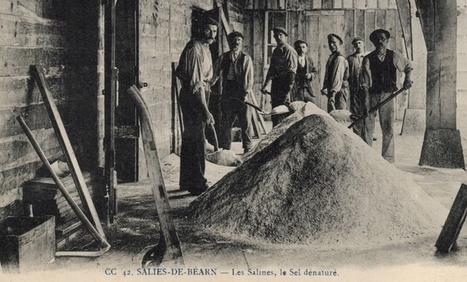 Salies de Béarn : des mariages qui ne manquaient pas de sel - www.histoire-genealogie.com | GenealoNet | Scoop.it