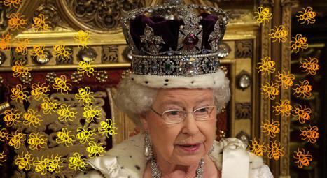 La Reine d'Angleterre va offrir 1000 £ à tous ceux qui se lancent dans l'apiculture | Les abeilles ont droit à un futur | Scoop.it
