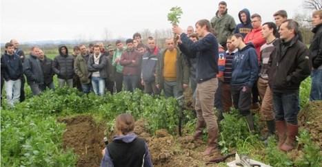 l'ASBL Greenotec : des expérimentations Par les agriculteurs et pour les agriculteurs et le premier Festival belge de l'Agriculture de Conservation le 16 juin   AC Agriculture de Conservation   Scoop.it