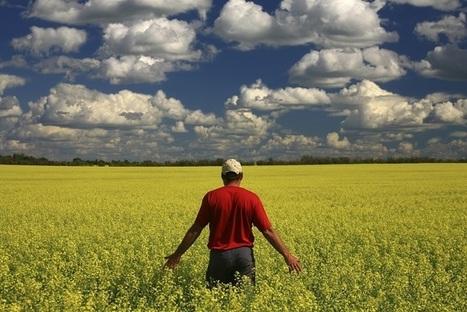 Les bienfaits écologiques de notre chaîne d'approvisionnement ... | Kilométrage alimentaire | Scoop.it