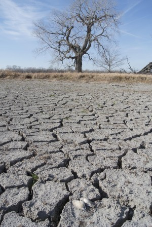 Drought worsens after weeks of improvement; Nebraska stable  : Business | Climate Chaos News | Scoop.it