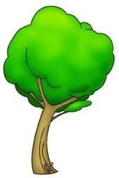 arborilogical's profile   Arborilogical   Scoop.it