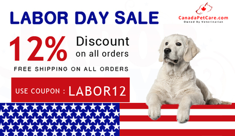 Commemorate Pet Safety On This Labor Day - CanadaPetCare Blog | Pet Supplies | Scoop.it