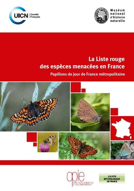La Liste rouge des papillons de jour de France métropolitaine - Comité français de l'UICN | Insect Archive | Scoop.it