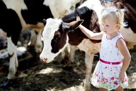 Rural upbringing protects against asthma and allergies | Farming, Forests, Water, Fishing and Environment | Scoop.it