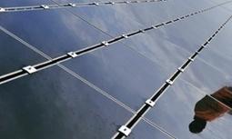 France decrees new rooftops must be covered in plants or solar panels | Research Capacity-Building in Africa | Scoop.it