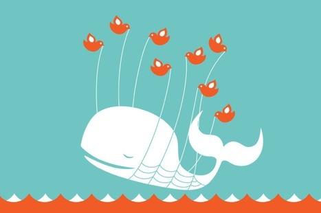 Les trois impossibles travaux de Twitter : innovation, monétisation et croissance | Animateur de communauté | Scoop.it