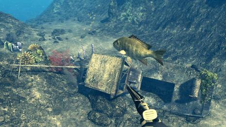 Depth Hunter : la chasse depuis votre canapé   Pêche et chasse sous-marine Beuchat   Scoop.it