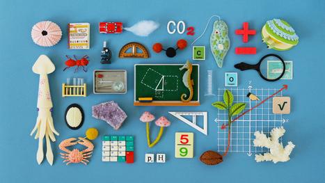 Meet the New Math, Unlike the Old Math    Quanta Magazine   Digital Culture   Scoop.it