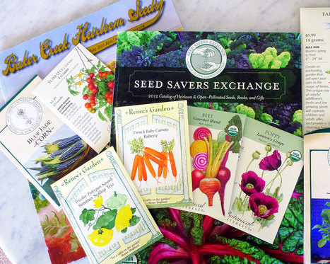 Six Questions to Ask Yourself Before Buying Seeds / Prepping | Fiskars | Annie Haven | Haven Brand | Scoop.it